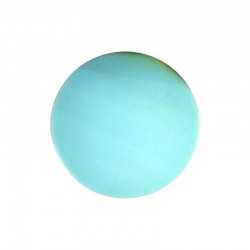 Spugna azzurro chiaro per TSF 400 (Conf. 5 pz)