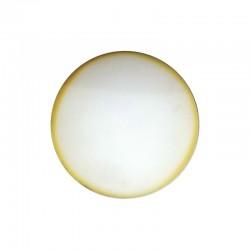Spugna bianca per TSF 400 (Conf. 5 pz)