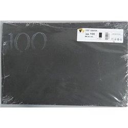 Carta abrasiva bifacciale 300x460 Gr. 100 per Planfix PRO55 conf. da 10 pz