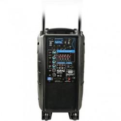 Diffusore amplificato BM 1010